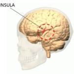 insula3-300x269
